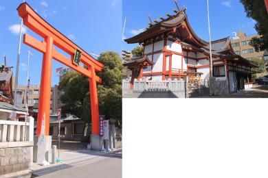 柳原蛭子神社【再建鳥居】