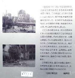 大丸山公園【被災木の移植】