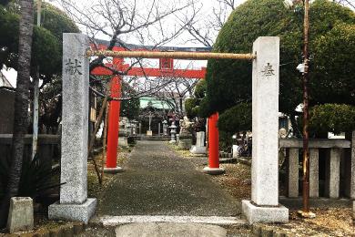 駒ヶ林蛭子神社【再建鳥居】